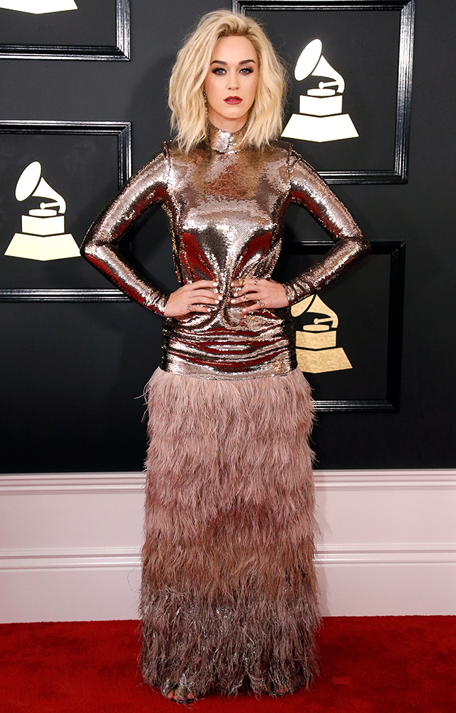 2017 Grammy Awards red carpet