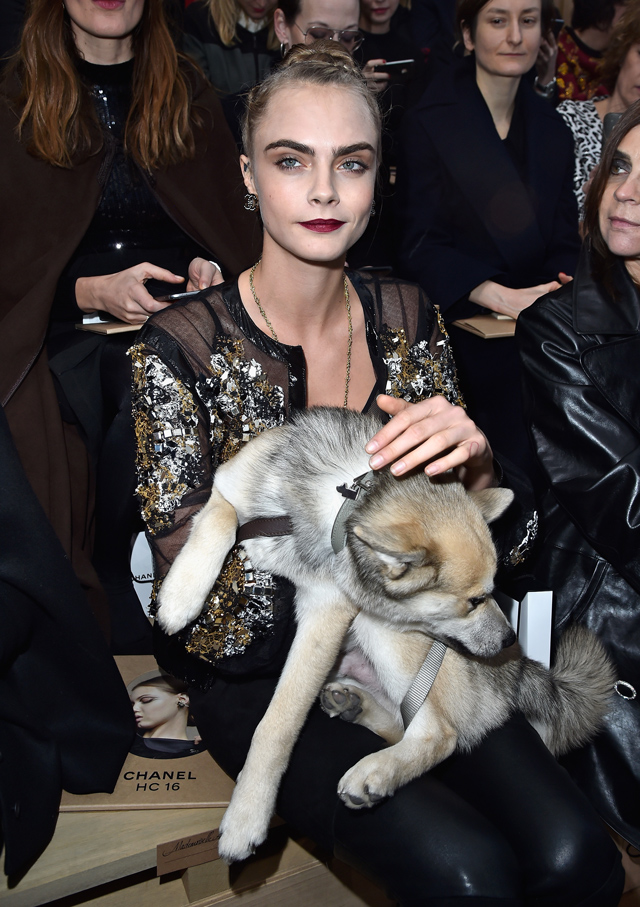 Cara Delevingne takes pet dog Leo to Chanel Couture SS16 in Paris