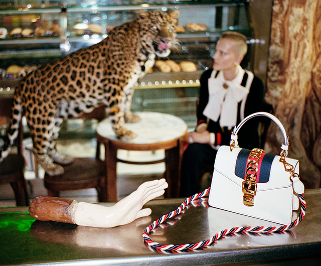 Gucci SS17: Alessandro Michele unveils Wild in Rome campaign (фото 10)