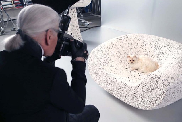 Karl Lagerfeld's cat lands beauty campaign (фото 1)