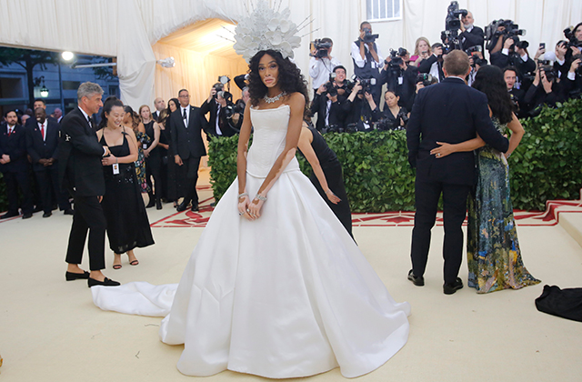 The 2018 Met Gala: Red carpet arrivals (фото 8)