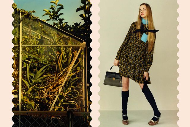For lemons love pre-fall collection