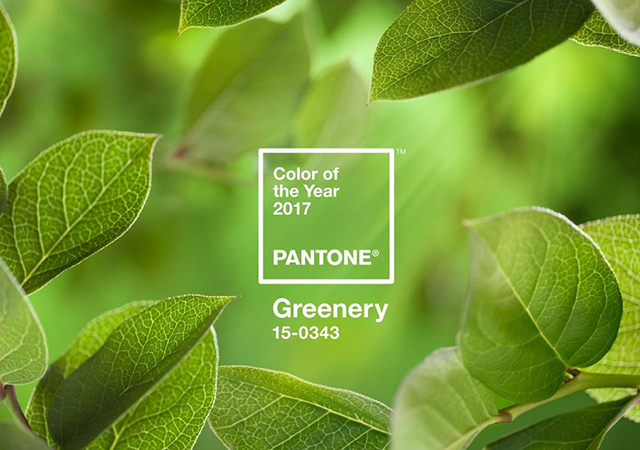 Pantone reveals colour of the year for 2017 (фото 1)