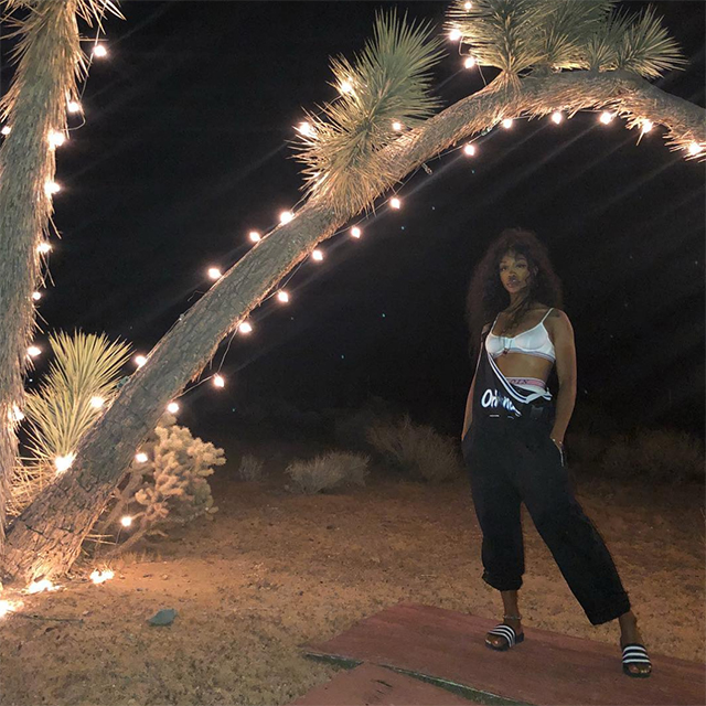 The best celebrity Instagrams from Coachella – Weekend Two (фото 7)