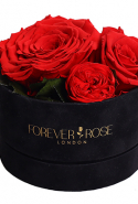 Forever Rose floral arrangement, price available upon request