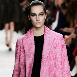 Burberry, Saint Laurent and Dior deny animal cruelty claims