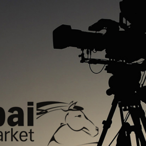 Dubai Film Market announces Enjaaz films to receive production support in 2014
