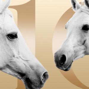 The Dubai International Horse Fair is back for its tenth edition