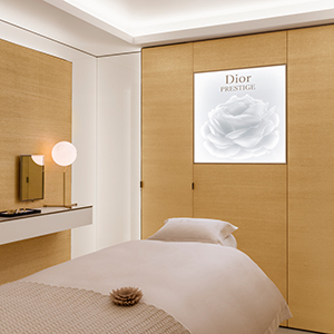 Laurence Bloch on how the Dior Spa at Hôtel Plaza Athénée Paris embodies tradition and modernity