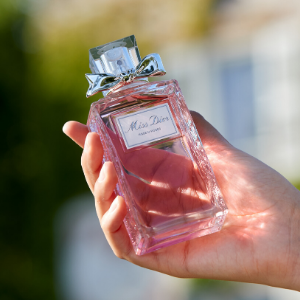 Watch: Go inside Dior's Rose harvest
