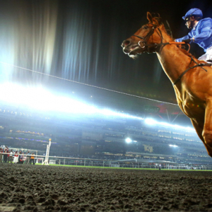 African Story wins Dubai World Cup for Godolphin