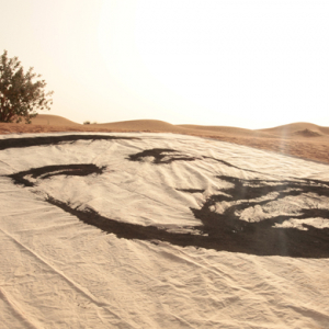 The largest Sheikh Zayed painting created in Dubai's desert sand
