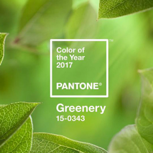 Pantone reveals colour of the year for 2017