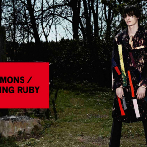 Raf Simons to launch e-commerce site and pop-up with Sterling Ruby