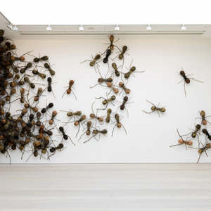The giant ant and skulls installation invading London's Saatchi Gallery