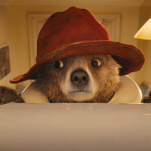 Watch now: The official 'Paddington' trailer