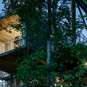 A fantasy treehouse created for the boy scouts of America