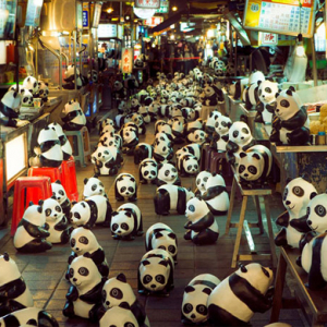 Papier-mâché pandas pop up at Hong Kong landmarks