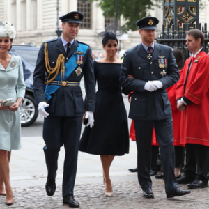 William, Kate, Harry and Meghan step out to celebrate #RAF100