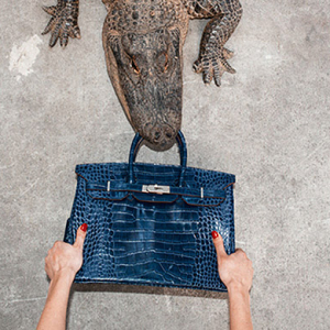 Photographer Tyler Shields feeds $100,000 Hermès Birkin to alligator