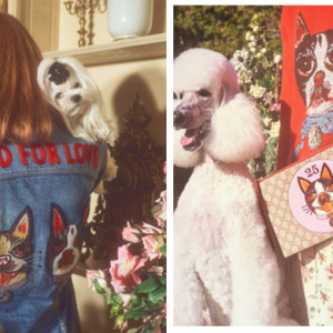 Gucci celebrates the Year of the Dog with new capsule collection