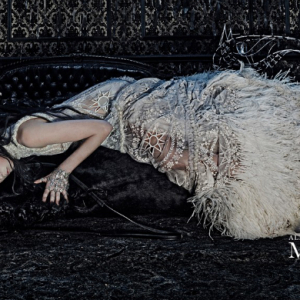 First look: Alexander McQueen's Autumn/Winter 14 campaign