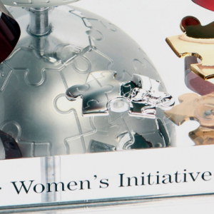 The Cartier Women's Initiative Awards 2014 - do you have what it takes?