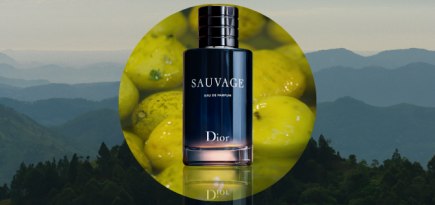 Must watch: 'Born in the Wild' is a tribute to Dior's Sauvage fragrance