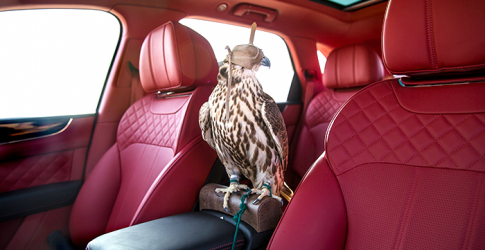 Bentley unveils the new Bentayga Falconry by Mulliner