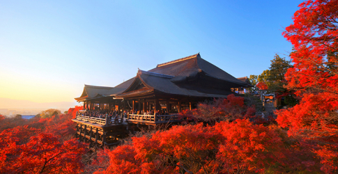 Official invite: Be the first guests at Four Seasons Kyoto