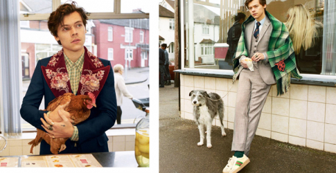 Gucci taps Harry Styles to front the new Gucci Tailoring campaign