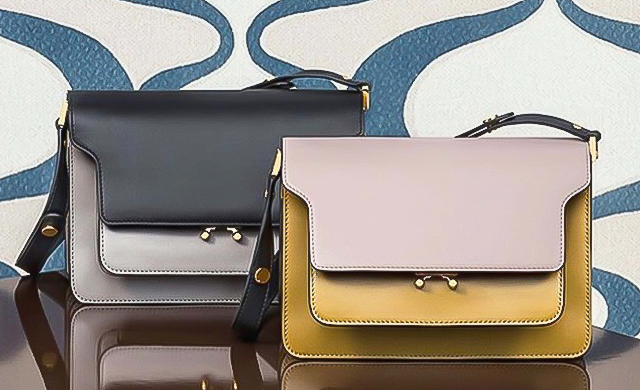 Must have: The Marni Trunk bag