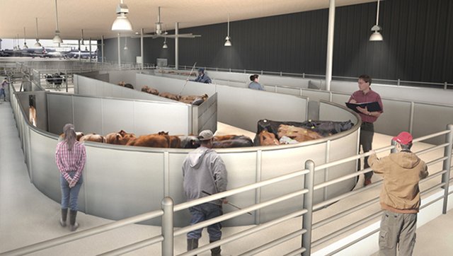 New York's JFK airport to add animal terminal 'The Ark'