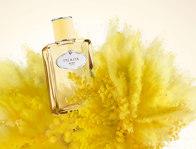A new note: Prada introduces Mimosa to its Les infusions de Prada collection