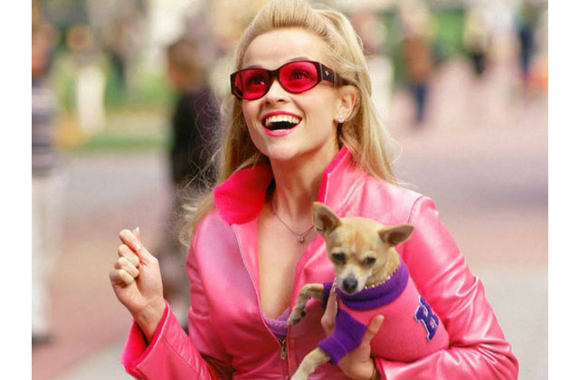 So, Legally Blonde 3 might be happening...
