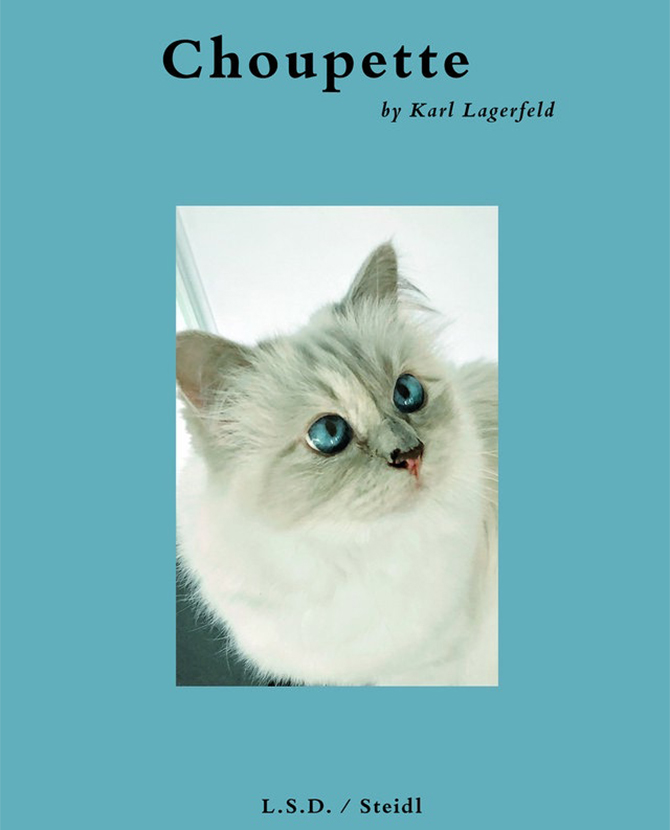 Your next feline companion, a new photography book shot by Karl Lagerfeld