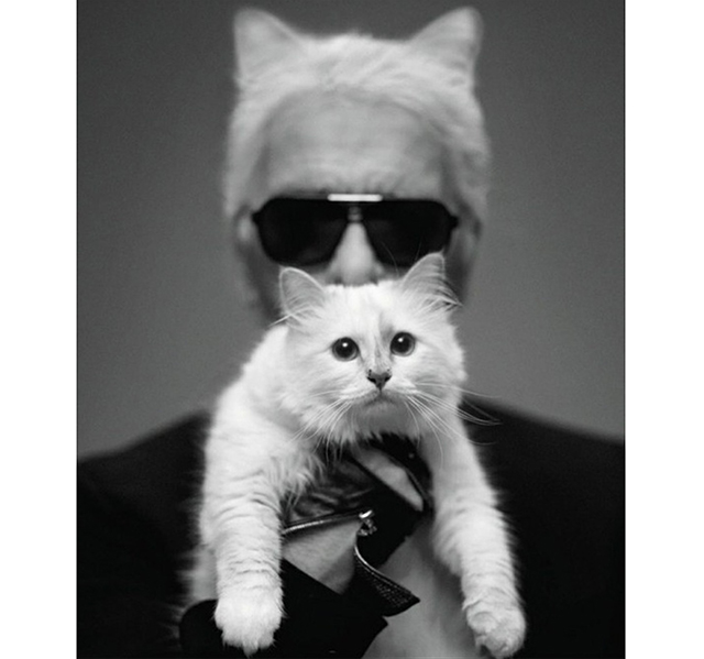 Choupette Lagerfeld made €3 million in 2014