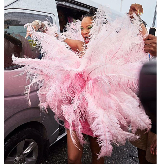 Rihanna's feathered frock is giving us fashion fever