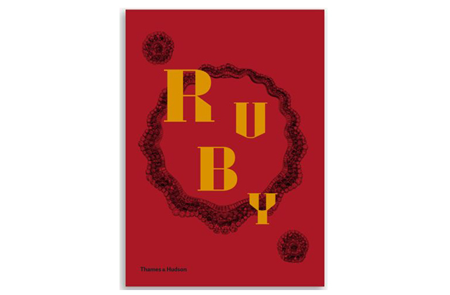 Book of the week: Ruby by Joanna Hardy