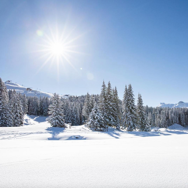 Top 10: Luxury ski resorts to experience now