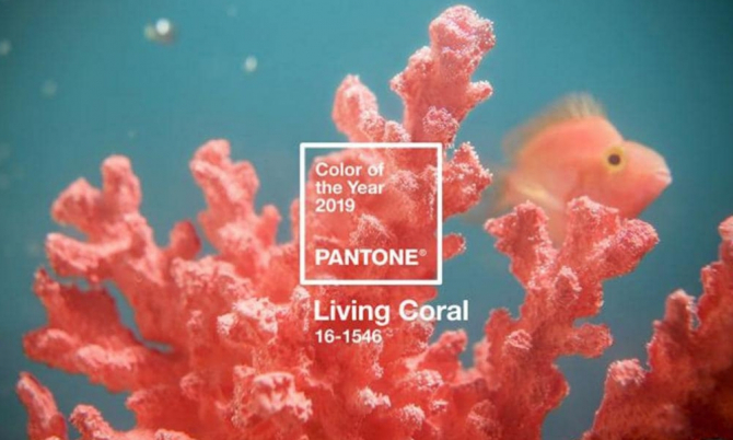 Pantone announces its 2019 Colour of the Year