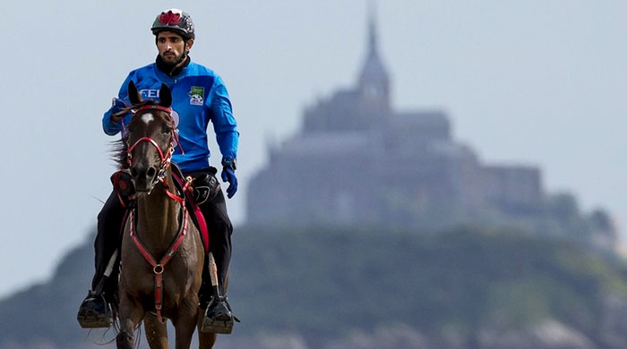 Sheikh Hamdan wins $2.6 million Dubai Endurance Race